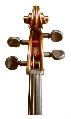 Cello with PEGHEDS installed